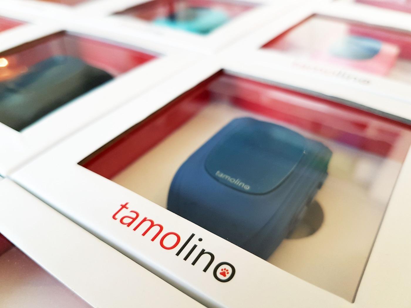 tamolino gps kinder tracking uhr news auslieferungstermin 2